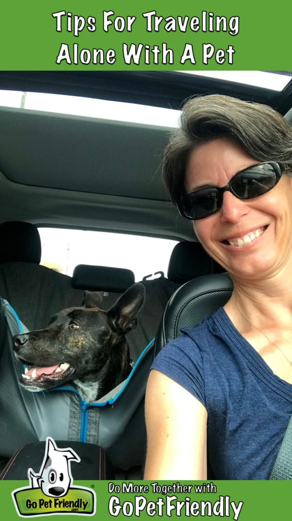 Woman in car with dog in backseat
