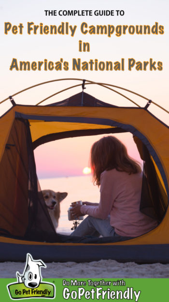 Woman and dog in a tent on the beach watching the sunset at a national park