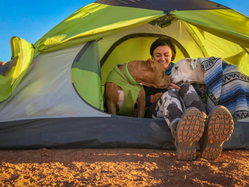 Woman n a tent with two dogs