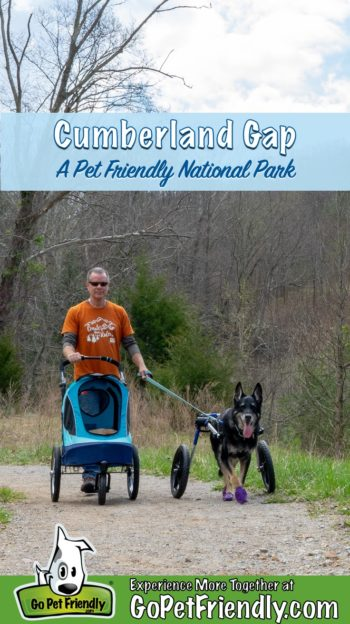 Man with dog walking a pet friendly trail at Cumberland Gap National Historic Park
