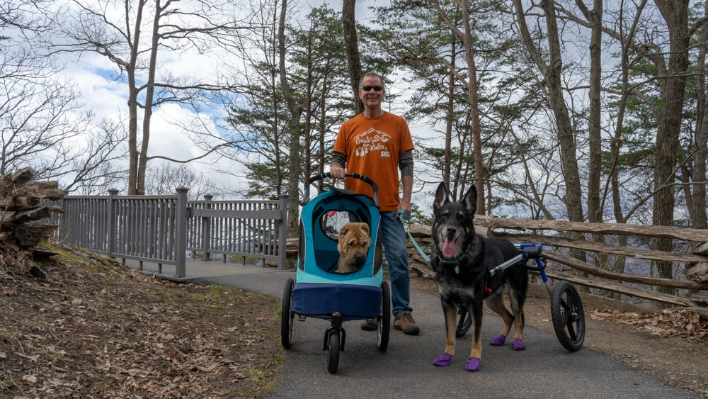 Man with two dogs on the pet friendly trail at Pinnacle Overlook in Cumberland Gap National Historic Park