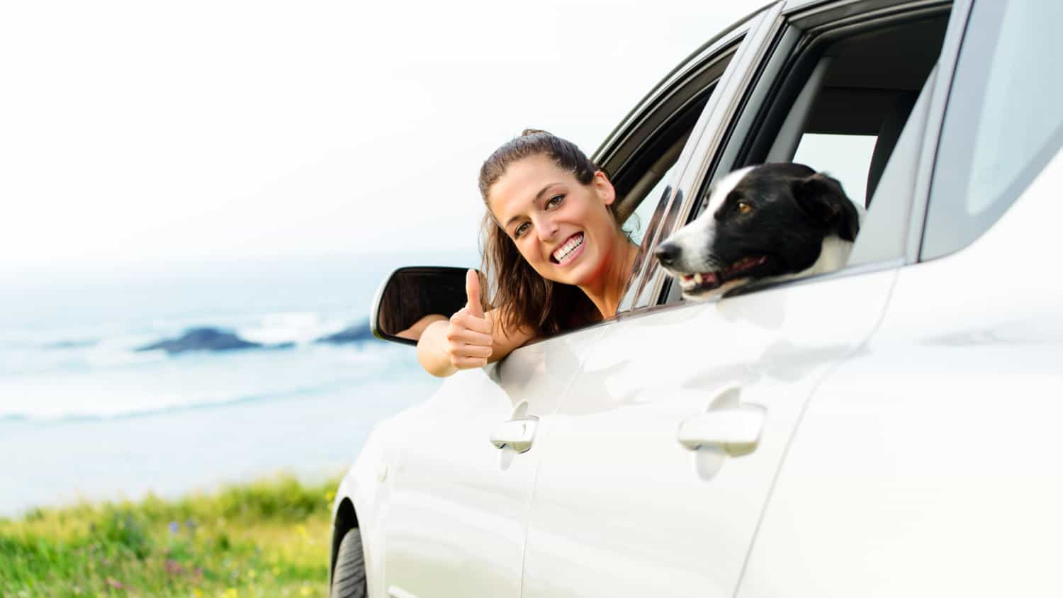 Happy woman traveling in car with dog. Coast landscape background.