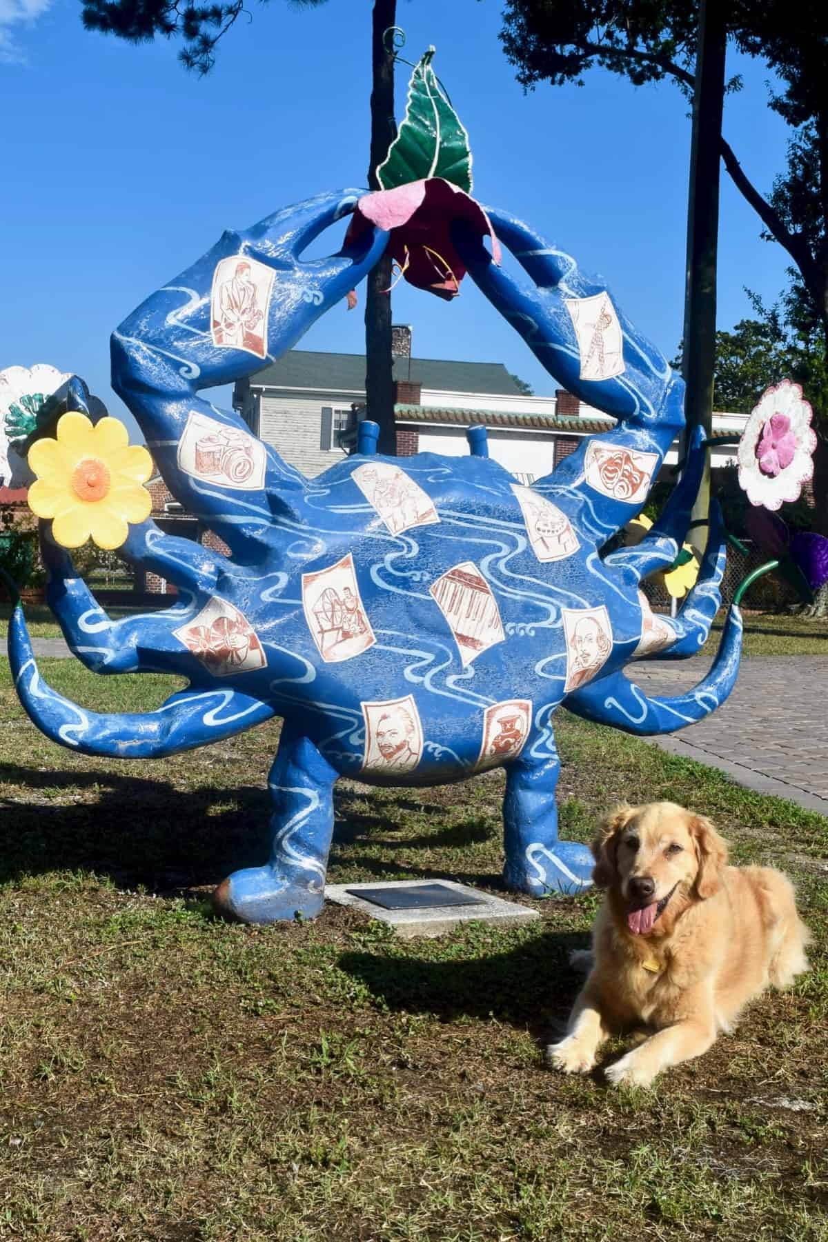 Golden retriever with crab sculpture