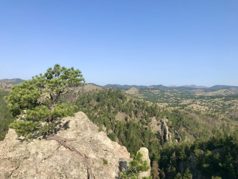 View from Lover's Leap in Custer State Park, South Dakota