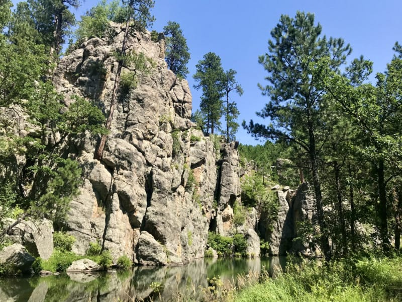 View from pet friendly Grace Coolidge Walk-in Trail at Custer State Park, South Dakota