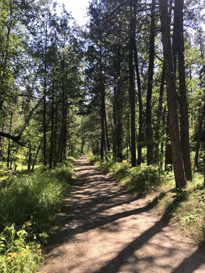 Pet friendly Grace Coolidge Walk-in Trail at Custer State Park, South Dakota