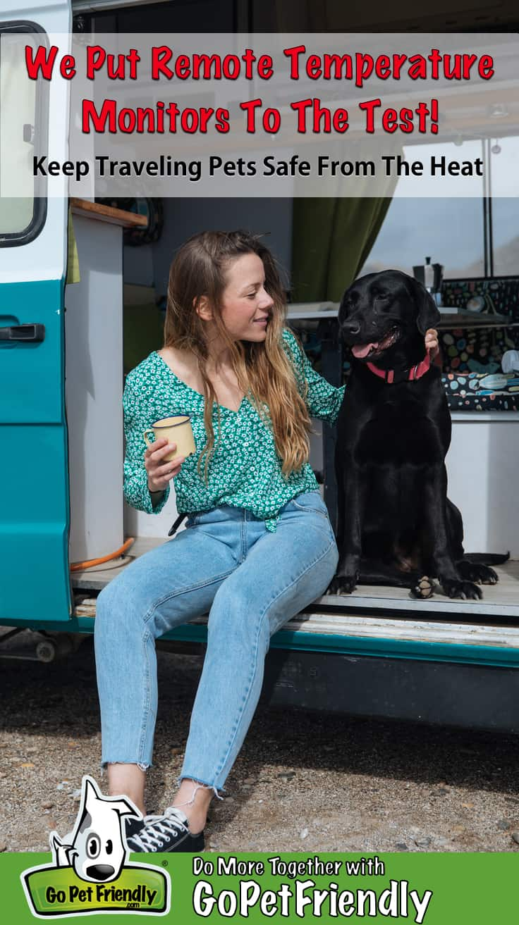 Woman and a black dog sitting in the doorway of a small RV
