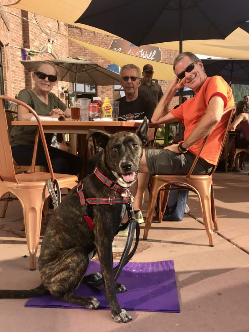 Brindle dog, woman and two men on the pet friendly patio at Custer Wolf in Custer, SD