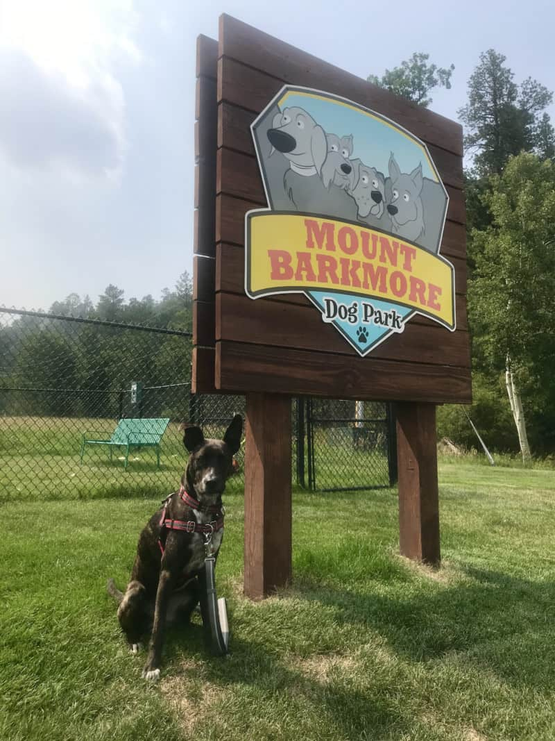 Brindle dog beside a sign for the Mount Barkmore Dog Park in Keystone, SD