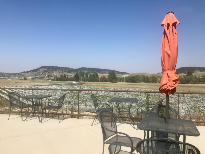 Pet friendly patio at Belle Joli Winery Sparkling House in Sturgis, SD