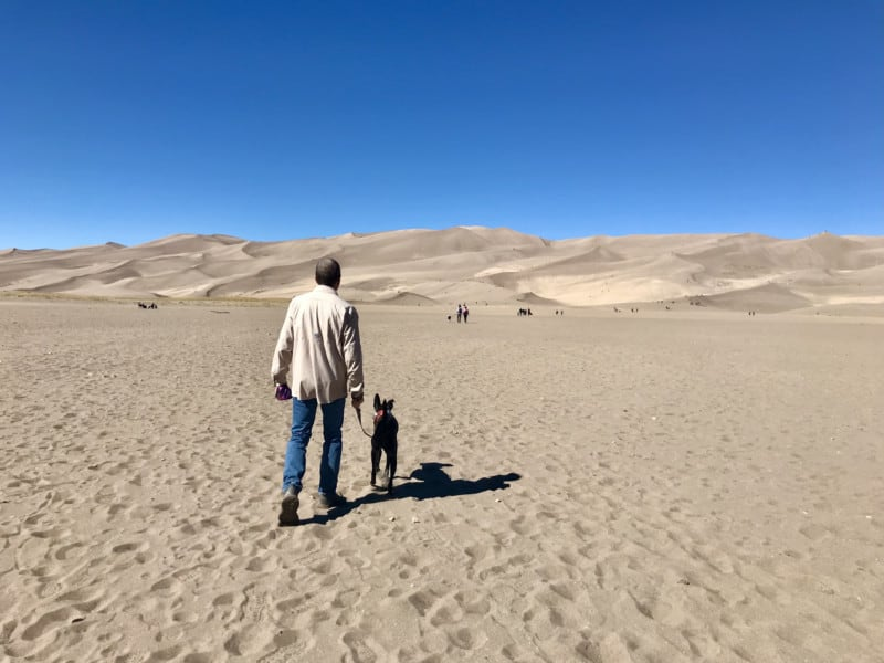 Man and dog walking toward the dunefield at Great Sand Dunes National Park in Colorado