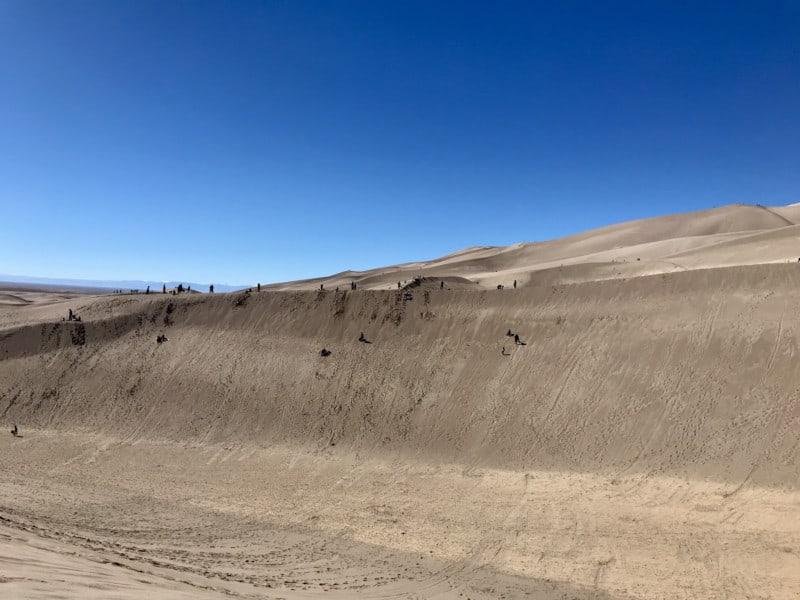 People sandsledding and sandboarding at pet friendly Great Sand Dunes National Park