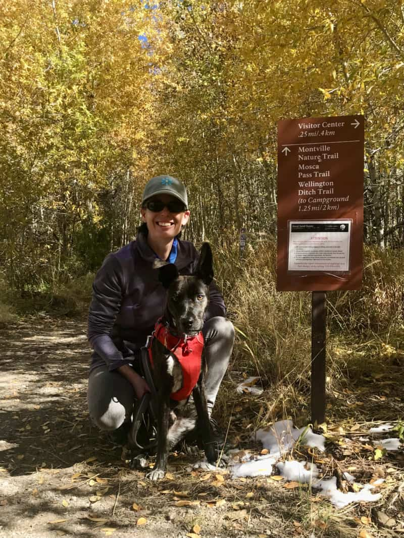 Woman and dog at pet friendly trailhead in Great Sand Dunes National Park in Colorado