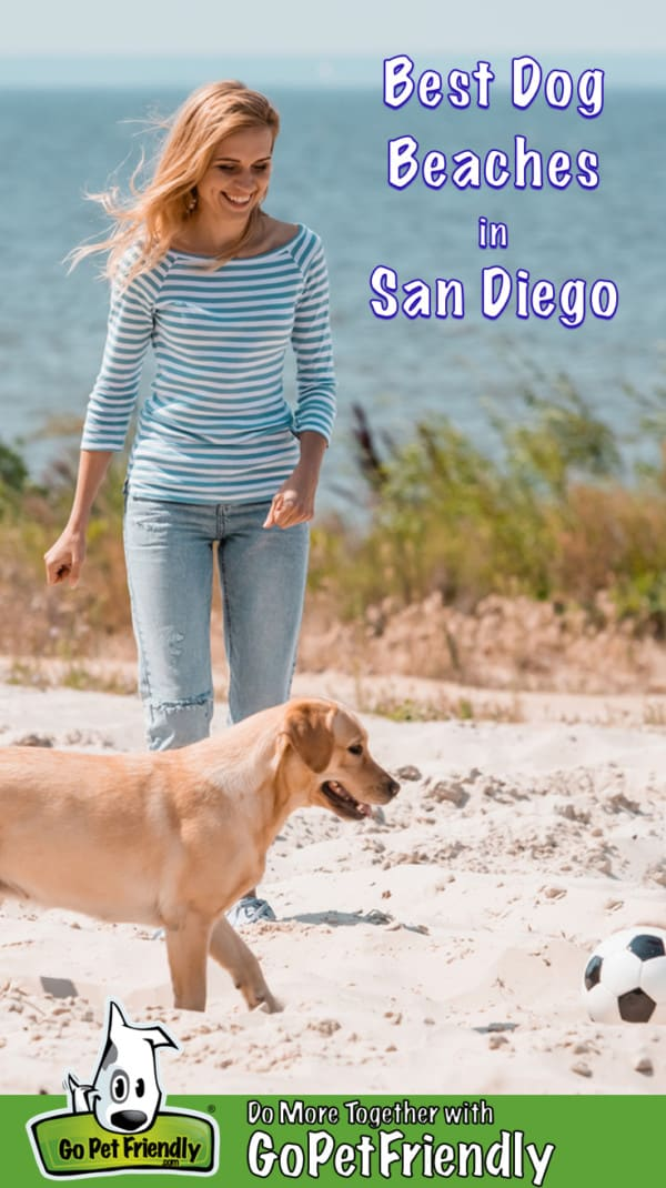 Woman and a yellow lab with a soccer ball on a dog friendly beach in San Diego, CA