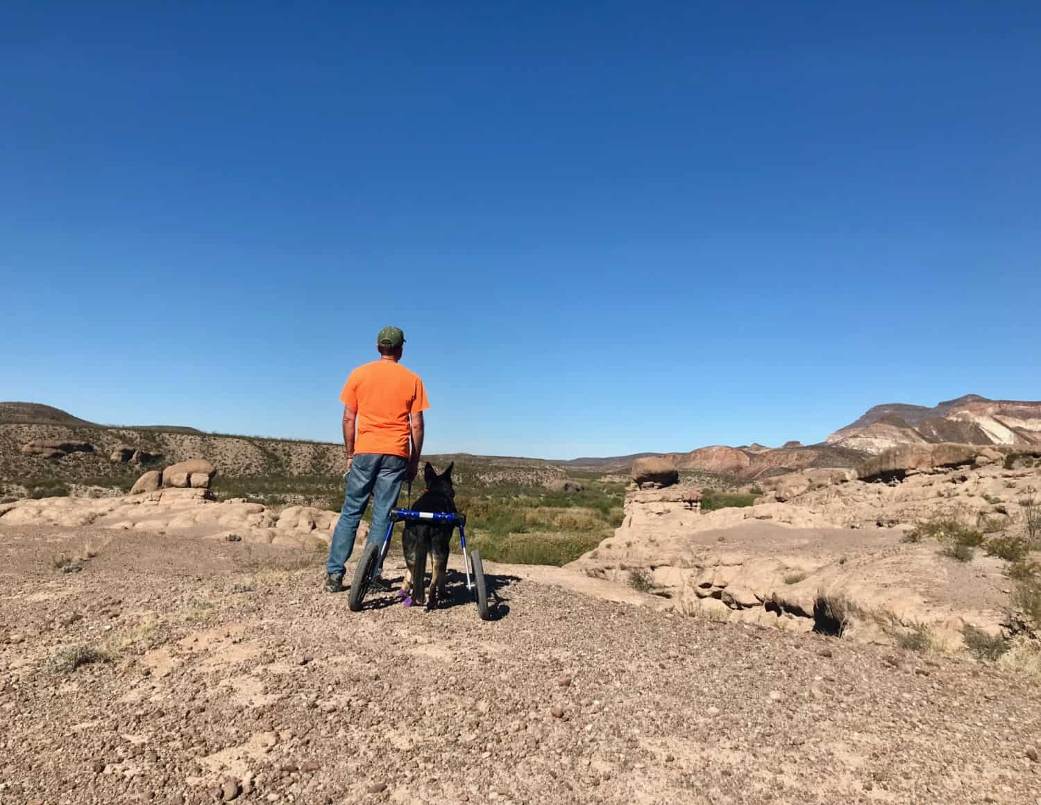 Man and German Shepherd Dog on the pet friendly Hoodoos Trail in Big Bend Ranch State Park, Texas