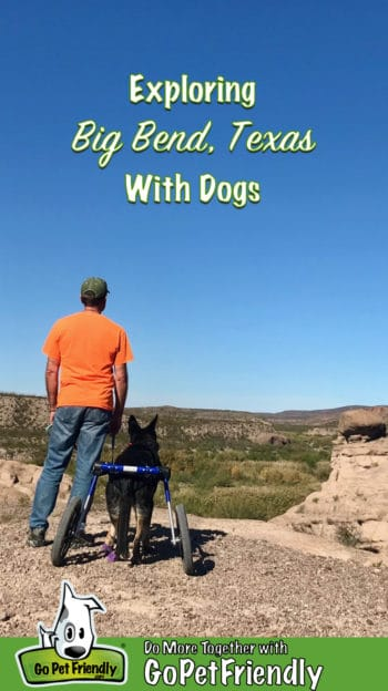 Man and a dog looking out over the Rio Grand River in Big Bend, TX