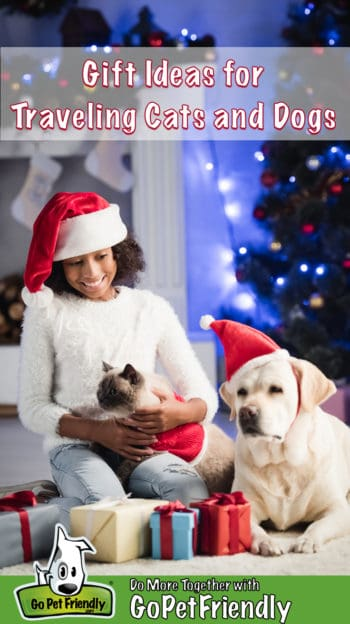 Girl in a Santa hat sits with a cat in her lap beside a Yellow Labrador dog in a Santa hat