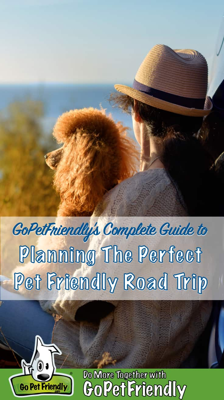 Woman in a hat with a poodle on her lap overlooking the ocean on a pet friendly road trip