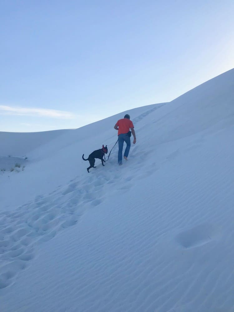 Man and dog on a pet friendly trail in White Sands National Park, NM