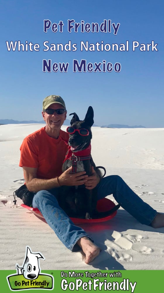 Man and a brindle dog in red goggles sitting on a red sled in White Sands National Park, NM