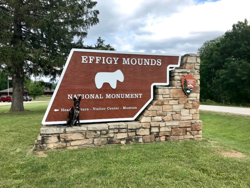 Brindle dog beside the sign for pet friendly Effigy Mounds National Monument in Iowa