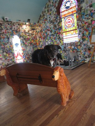Dogs at the Dog Chapel at Dog Mountain in St. Johnsbury, VT