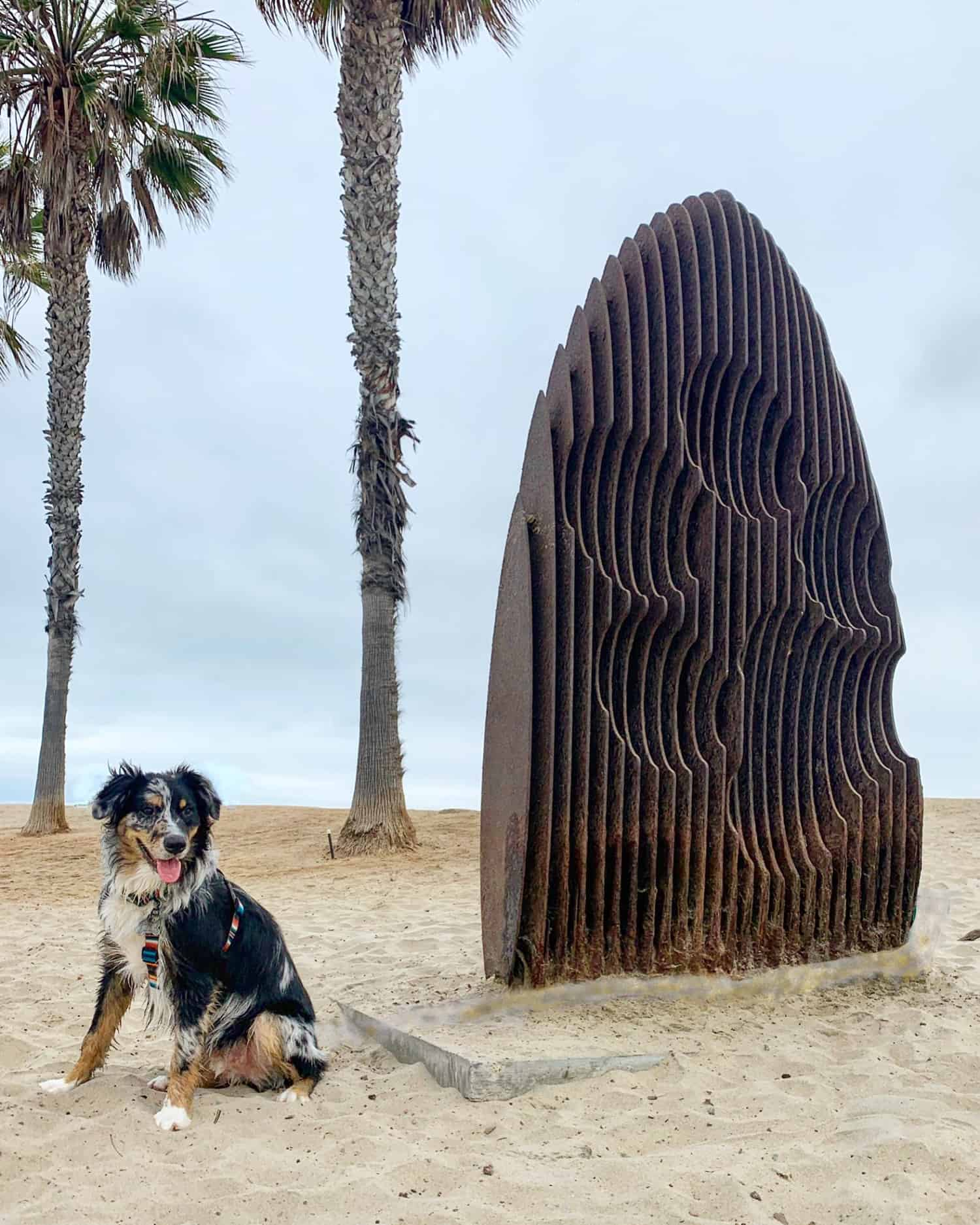 Black and white dog sitting on a beach beside a surf board statue