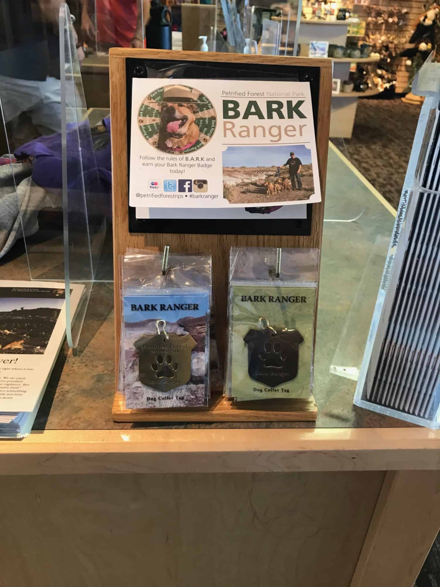 Bark Ranger tag display in the counter at Petrified Forest National Park