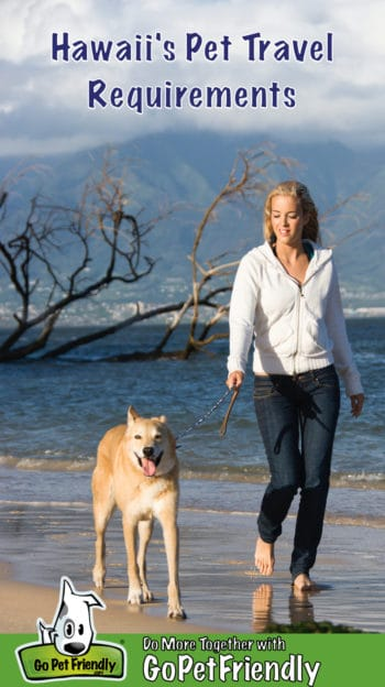 Woman and dog walking on a pet friendly beach in Hawaii
