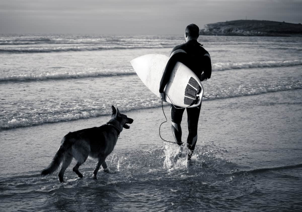 Black and white photo of a surfer holding his surf board with a German Shepherd Dog beside him