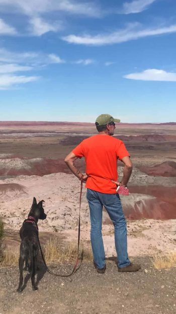 Man and dog standing on a rim overlooking the landscape at Petrified Forest National Park in AZ