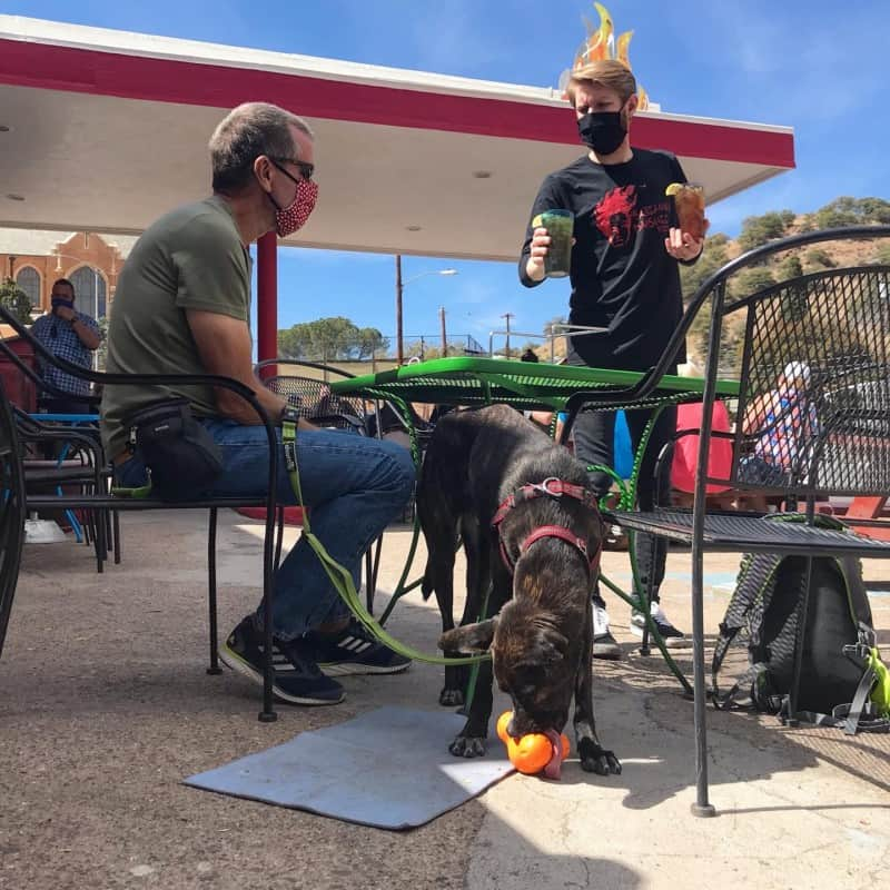 Waiter serving drinks at a pet friendly table at Screaming Banshee Pizza in Bisbee, AZ