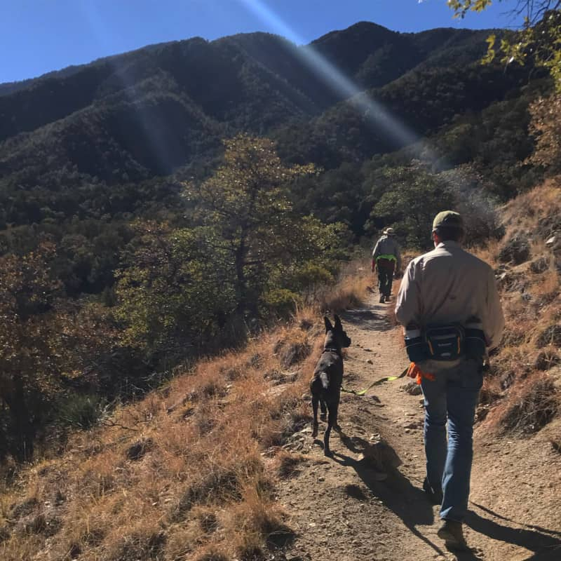 Man and dog on a pet friendly hiking trail in Madera Canyon near Tucson, AZ