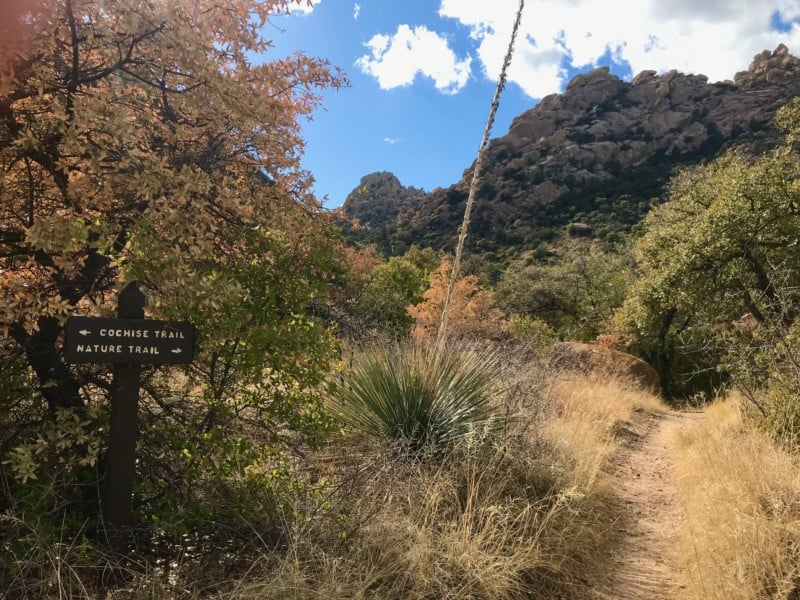 Sign along a dog friendly trail at Cochise Stronghold near Tucson, AZ