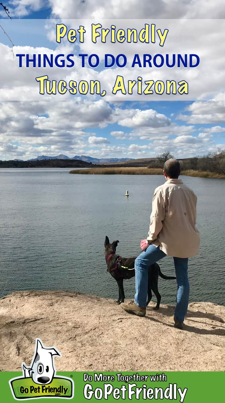 Man and dog overlooking a lake near Tucson, AZ with mountains in the distance