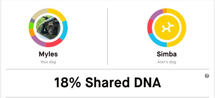 Embark DNA Relatives for Myles